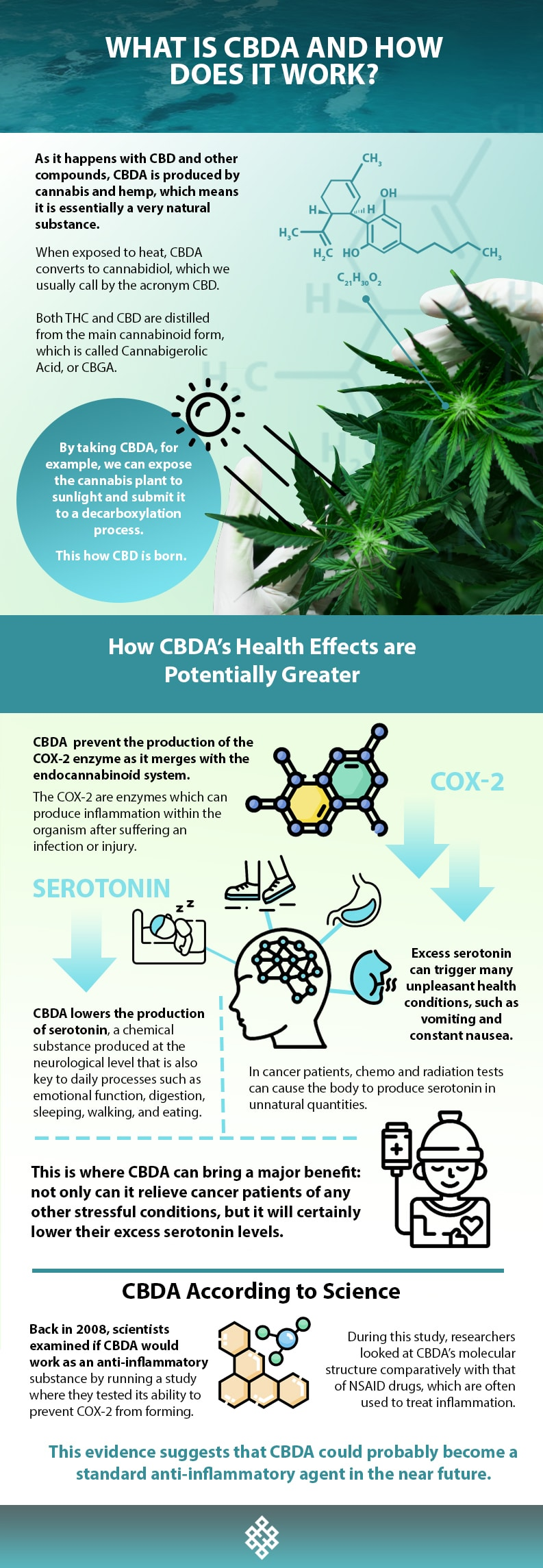 CBDA, What Is CBDA And How Does It Work?