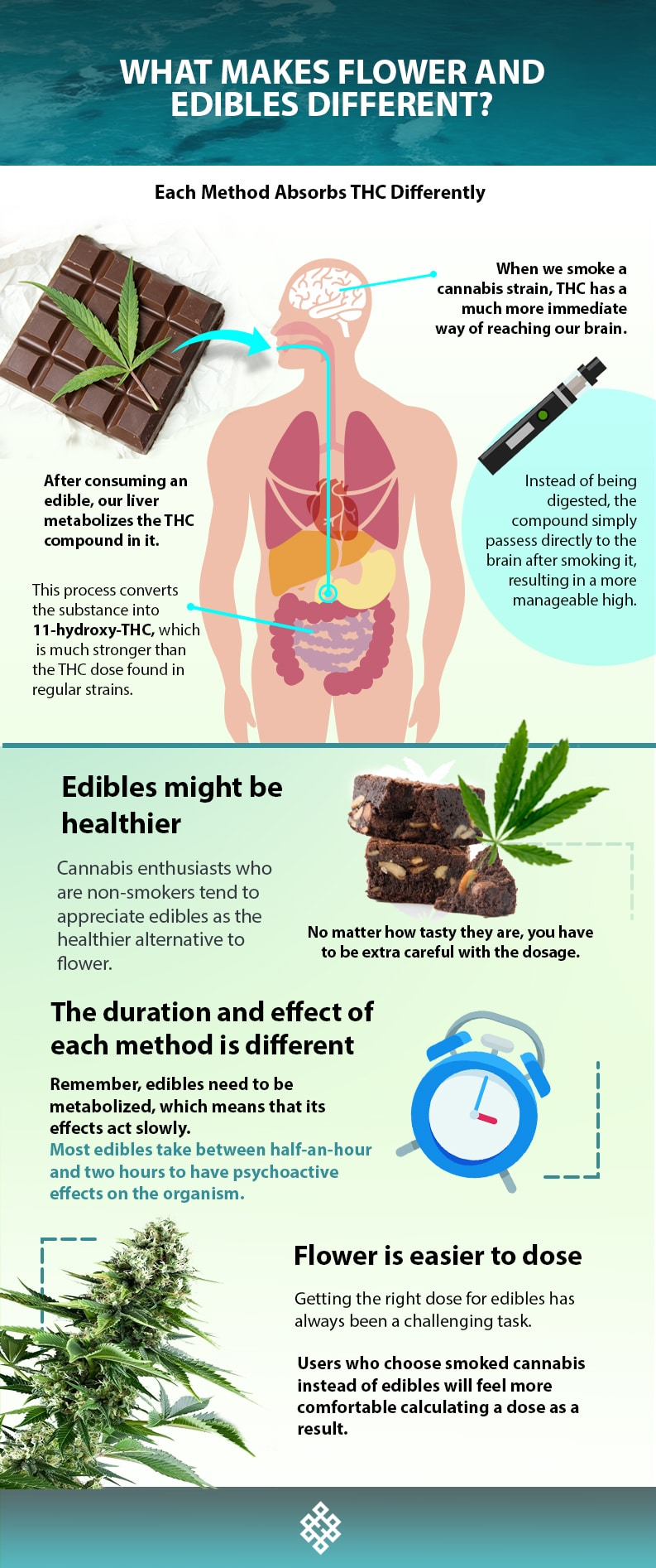, What Makes Flower and Edibles Different?