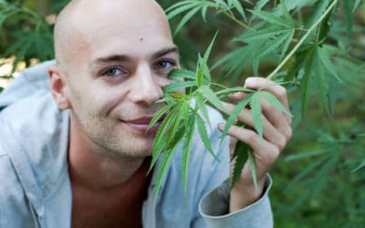 Talking THC and Cancer